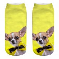 Mini calza donna cane razza Chiwawa