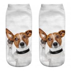 Mini calza donna cane razza Jack Russell