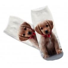 Mini calza donna stampa cane razza cucciolo Labrador