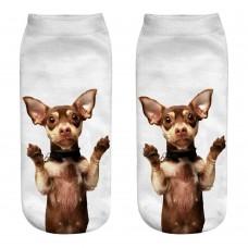 Mini calza donna cane razza Pincher