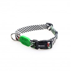 Collar + Leash HiDream Profusion Cactus